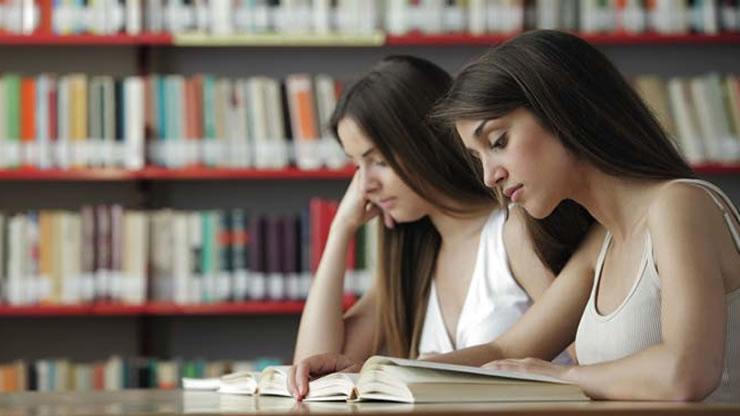 Estrategias para el perfeccionamiento del proceso de enseñanza aprendizaje en la Educación Superior. Año 4. Número 12